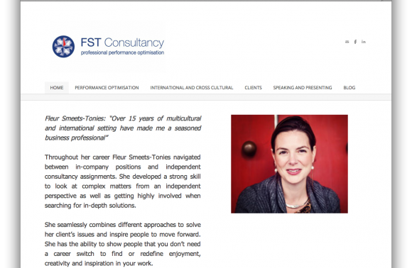 28_1.fst-consultancy_homepage2