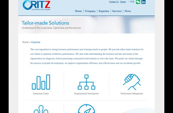 30_5.5-ritz-consultancy_expertise